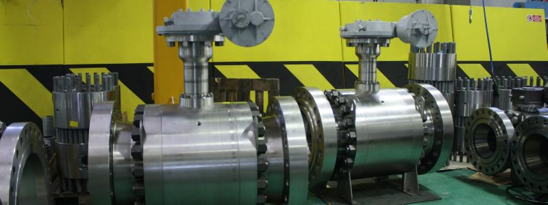 Trunnion ball valves for cryogenic sevice